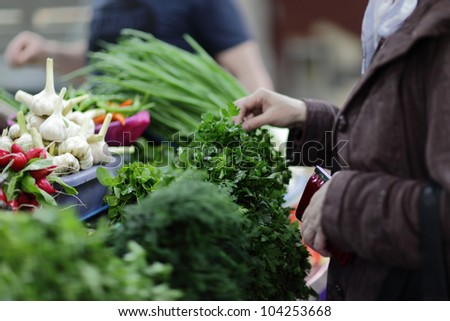The woman chooses a greens in a market - stock photo