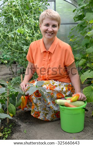 The woman of average years reaps a crop of vegetables in the greenhouse