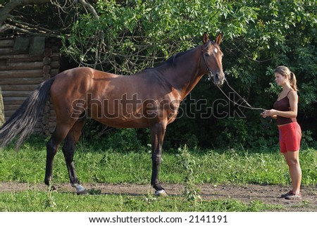 The woman trains the horse - stock photo