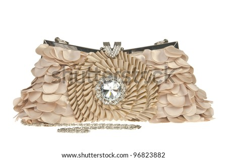 The women clutch bag on white background - stock photo
