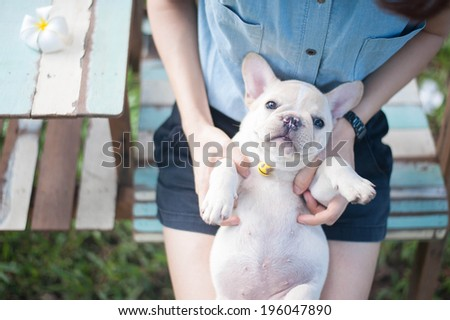 The women holding his friendly puppy - stock photo