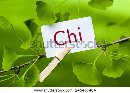 The Word Chi in a Ginkgo Tree - stock photo