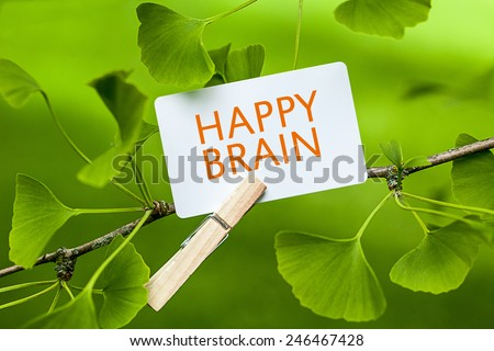 The Word Happy Brain in a Ginkgo Tree - stock photo