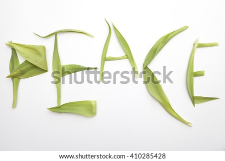 "The word ""peace"" written with green leaves on a white background"