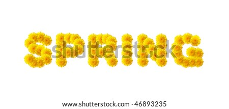 """The word """"SPRING"""" written with dandelions. - stock photo"""