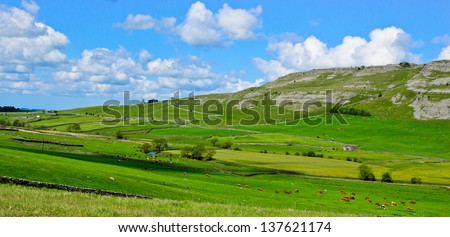 The Yorkshire dales landscape in summer - stock photo