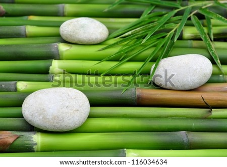 Therapy stones on green bamboo - stock photo