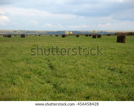 There are haystackes  and field of green grass - stock photo