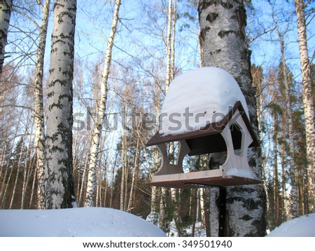 There are plants in snow. Winter forest and bird feeder - stock photo