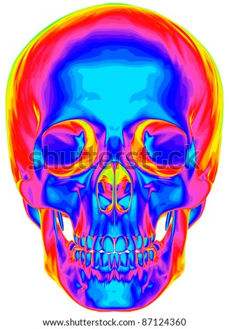 Thermal image of the human skull, isolated on white background. Bitmap copy my vector ID 74509654 - stock photo