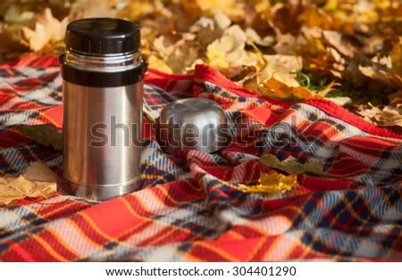 Thermos is on the blanket in autumn park