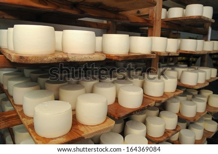 These are cheese racks in the refining. This is process of cheese cure.