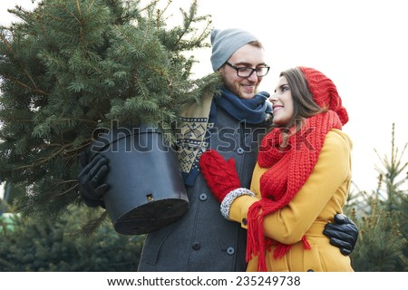 They found perfect Christmas tree - stock photo