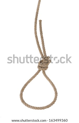 Thick ropes of flax tied in noose for hanging. On a white background.