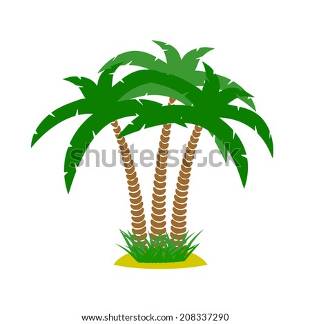 thickets of palm trees on a white background
