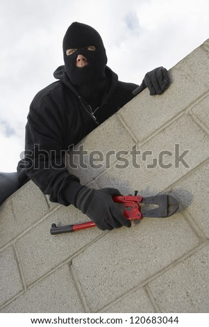 Thief climbing wall with wire cutter
