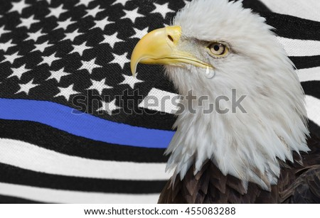 Thin blue line American flag with Bald Eagle.  Police brotherhood flag.