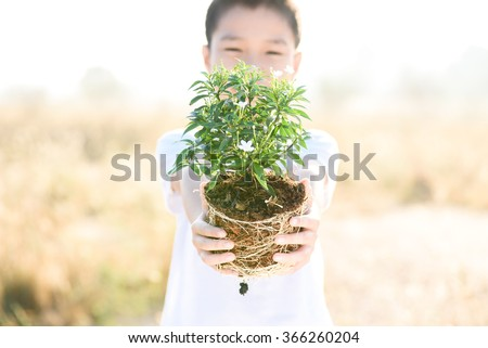 Thin focus on hand, Child holding young seedling plant in hands on dry land to plant on soil. Concept Earth day - stock photo