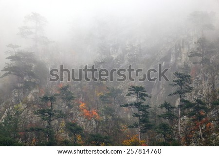 Thin layers of fog cover distant forest on the mountain side in autumn - stock photo