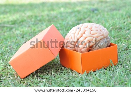 thinking out of box  - stock photo