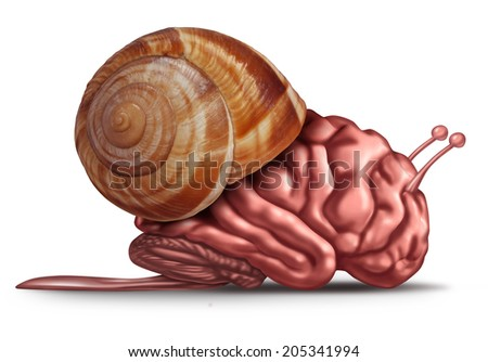 Thinking slow and brain function problems concept as a human organ in a snail shell as a mental health symbol for struggling with memory and  dementia as alzheimer or neurology challenges. - stock photo