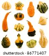 Thirteen unique and colorful autumn gourds over a white background - stock photo
