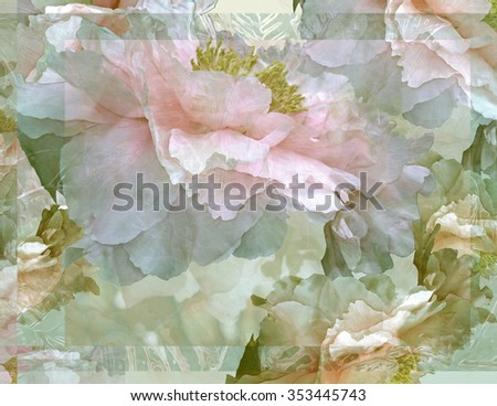 "This image of ""floating"" Peonies is graceful and elegant, and its transparency reminds me of the beauty and transience of life."