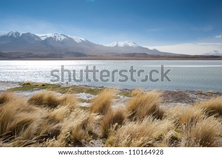 This image shows a high Andean Lake in Bolivia