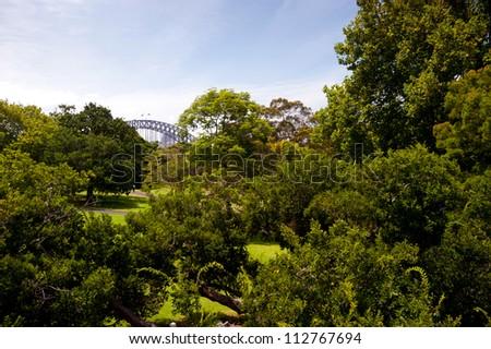 This image shows a vista within the Royal Botanical Gardens - Sydney, Australia - stock photo