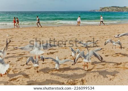 This image shows Bondi Beach in Sydney, Australia  - stock photo