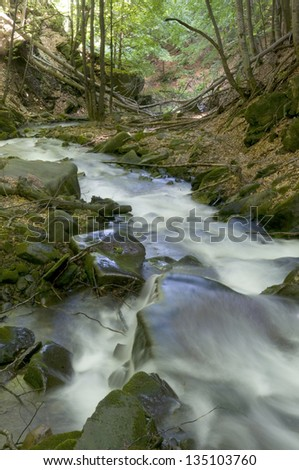 This is a mountain stream. Riversides are spread with fallen leaves. - stock photo
