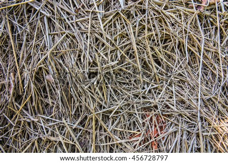This is a rice straw texture.