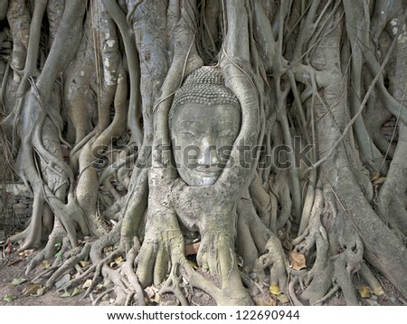 This is a Stone budda head traped in the tree roots Ayudthaya Thailand.
