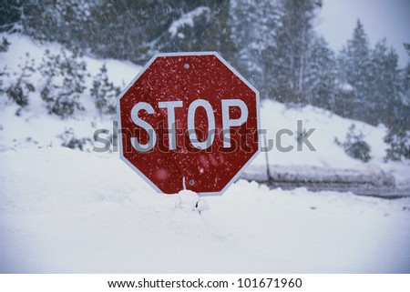 This is a stop sign after a freshly fallen snow. The snow is piled up high underneath the stop sign. The background indicates a snowy landscape. - stock photo