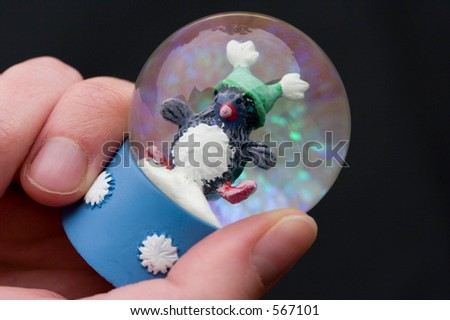 This is an image of a hand holding cute christmas snowglobe containing a penguin. - stock photo