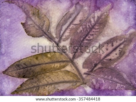 This is an image of a naturally printed leaf transfer which are done by using Eco-Printing.  The process uses the actual leaf, dipped with iron water and boiled in various types of natural dye water.