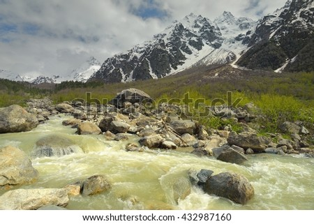 This is colorful brook in Caucasus mountains in summer