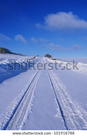 This is the Last Dollar Road in snow. It is at the Dallas Divide in the San Juan Mountains. It shows a road with freshly fallen snow with car tracks indented in the snow.