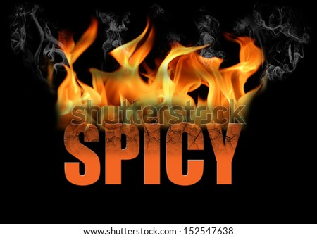 This is the word spicy in fire text with smoke and flames coming off a black background.  Many conceptual ideas. - stock photo