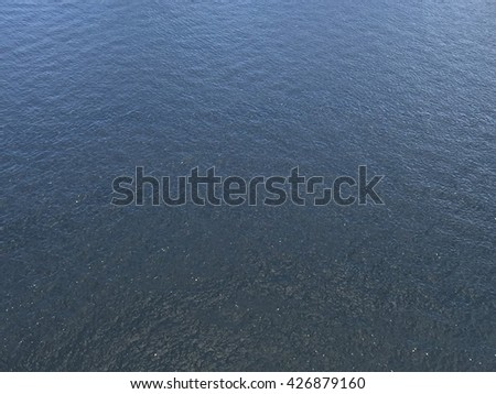 This is what our water looks like here in the South Florida area. Sometimes I can see all kinds of wildlife swimming around. - stock photo