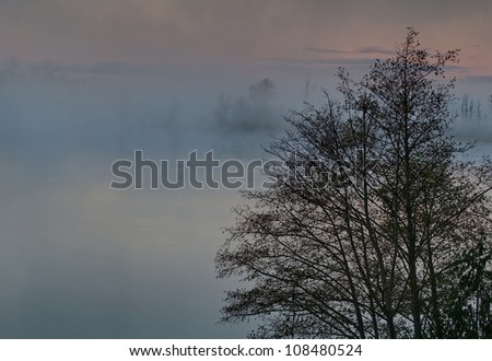 This nature stock image is a foggy morning on a lake at sunrise with the misty rising up off the water.  Trees in the foreground, in Clear Lake Washington located in Skagit County, America. - stock photo