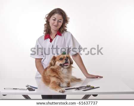 This photo shows a girl doing a manicure to is dog.