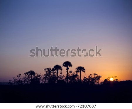 This photograph contains an image of a silhouette island of palm trees at sunset.