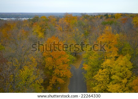 This photograph was taken atop a lookout tower at Wisconsin's Potawatomi State Park in Door County. - stock photo