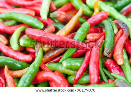 this picture is a group of Chilli - stock photo