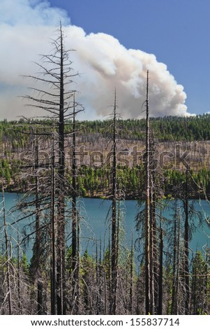 This rocky mountainous area is having a reoccurrence of a forest fire. - stock photo