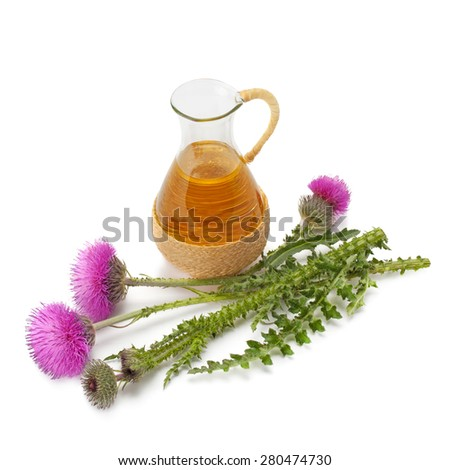 thistle oil and milk thistle flower isolated on white background - stock photo
