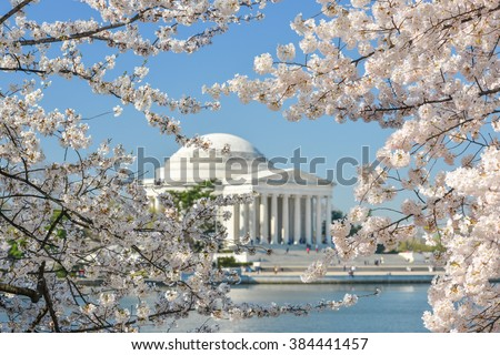 Thomas Jefferson Memorial during cherry blossom festival at sunset, Washington DC United States