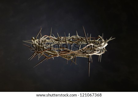 Thorn Crown isolated on a neutral background - stock photo