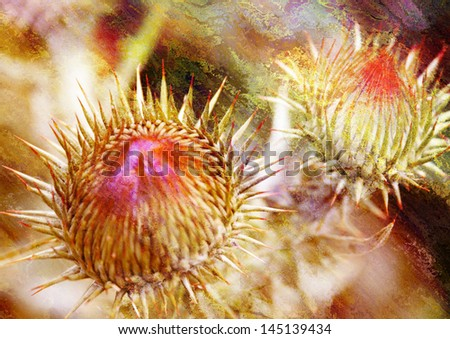 thorn - stylized picture with patina texture - stock photo